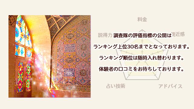 美沙(ミサ)先生の評価指標【電話占いフィール】