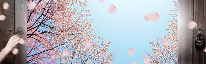 ドアが開かれ外に桜満開の春が訪れた風景